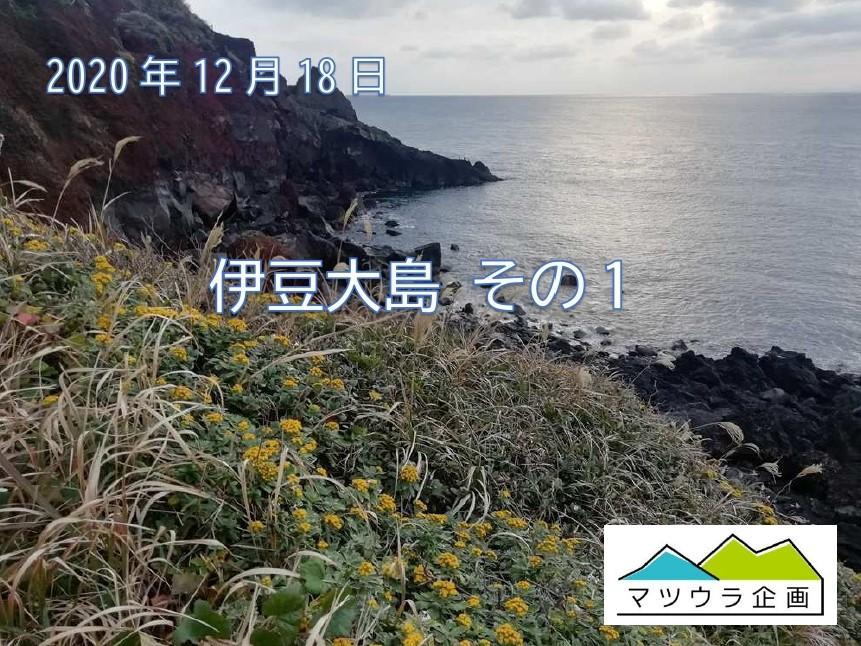 伊豆大島 その1