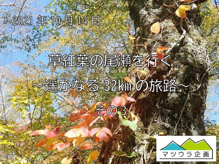 草紅葉の尾瀬を行く ~遥かなる32kmの旅路 ~ その3