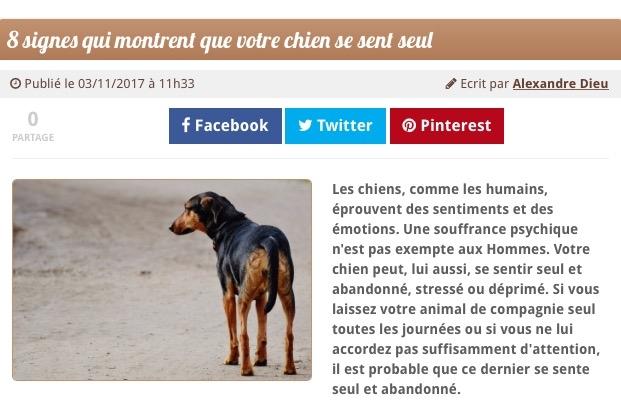 https://www.chien.fr/actualite/8-signes-qui-montrent-que-votre-chien-se-sent-seul/