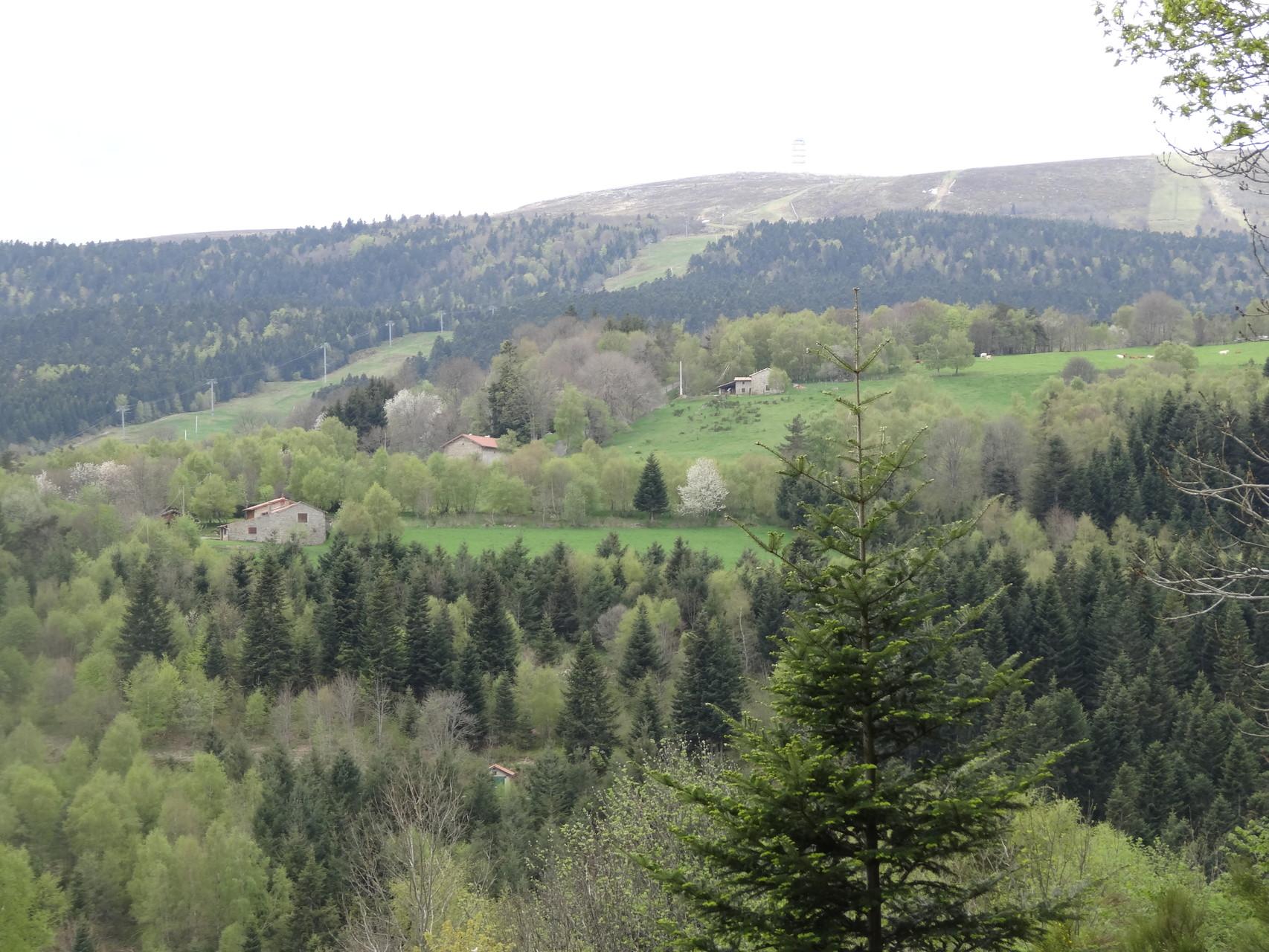 Point de vue depuis la terrasse zoom sur Pierre sur Haute