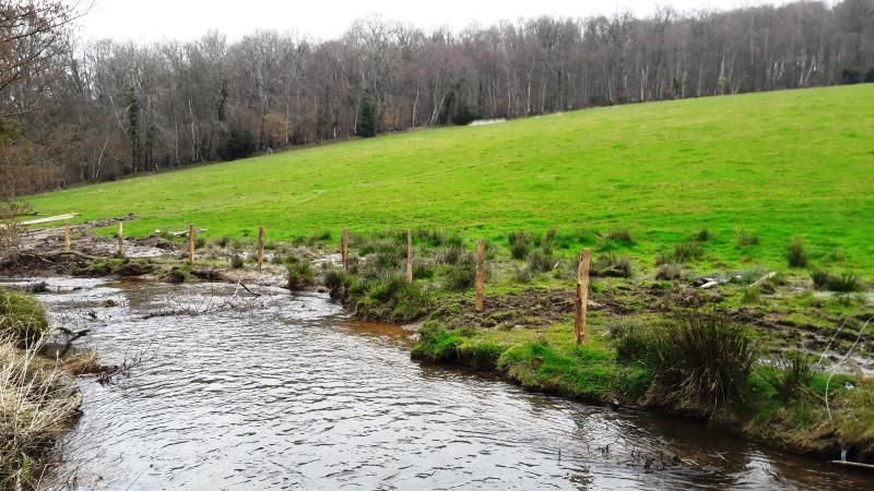 Installation d'une clôture afin de restaurer les berges du cours d'eau