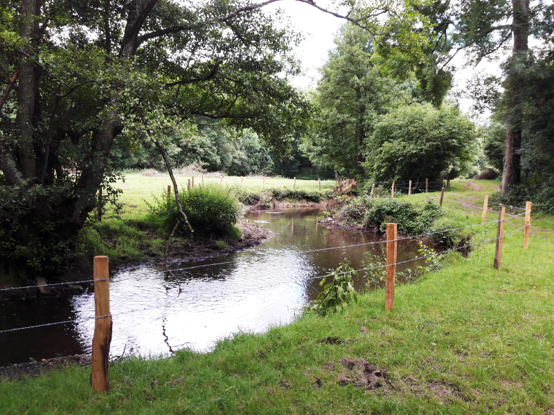 Mise en défens des berges par l'installation d'une clôture