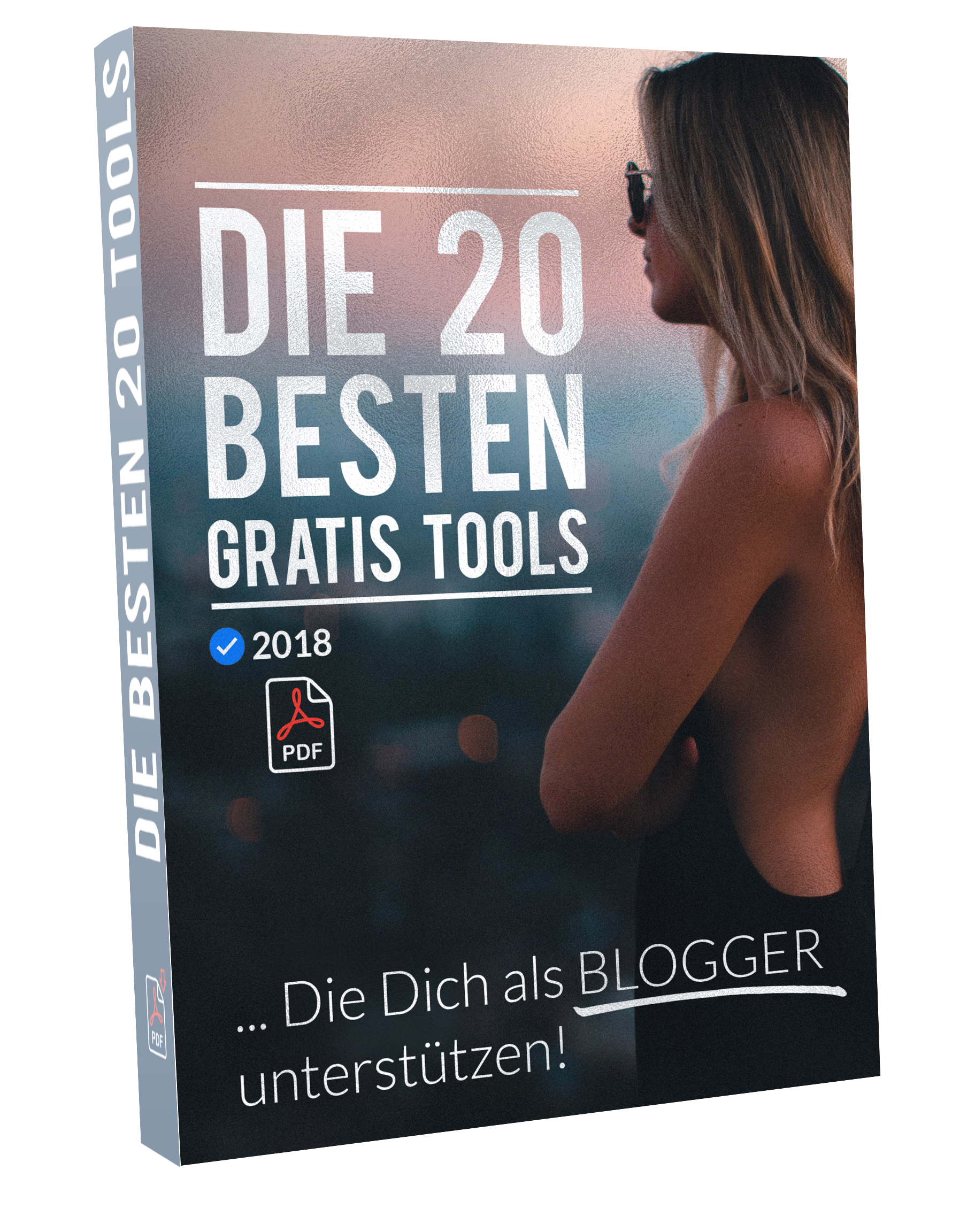 Cover von einer DVD Hülle zum Thema bloggen und gestalten lernen