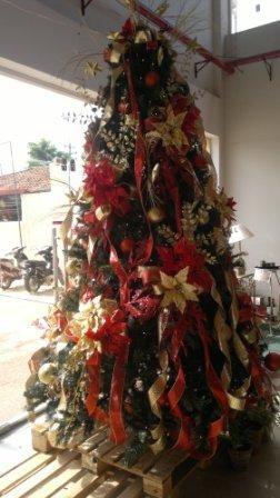 Weihnachtsbaum im Super Express
