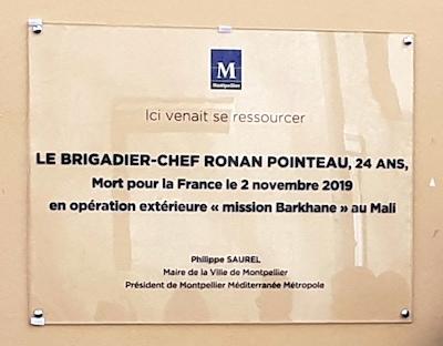 Plaque Ronan POINTEAU (23 février)