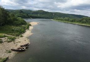 Lachs - Lachsangeln in Norwegen