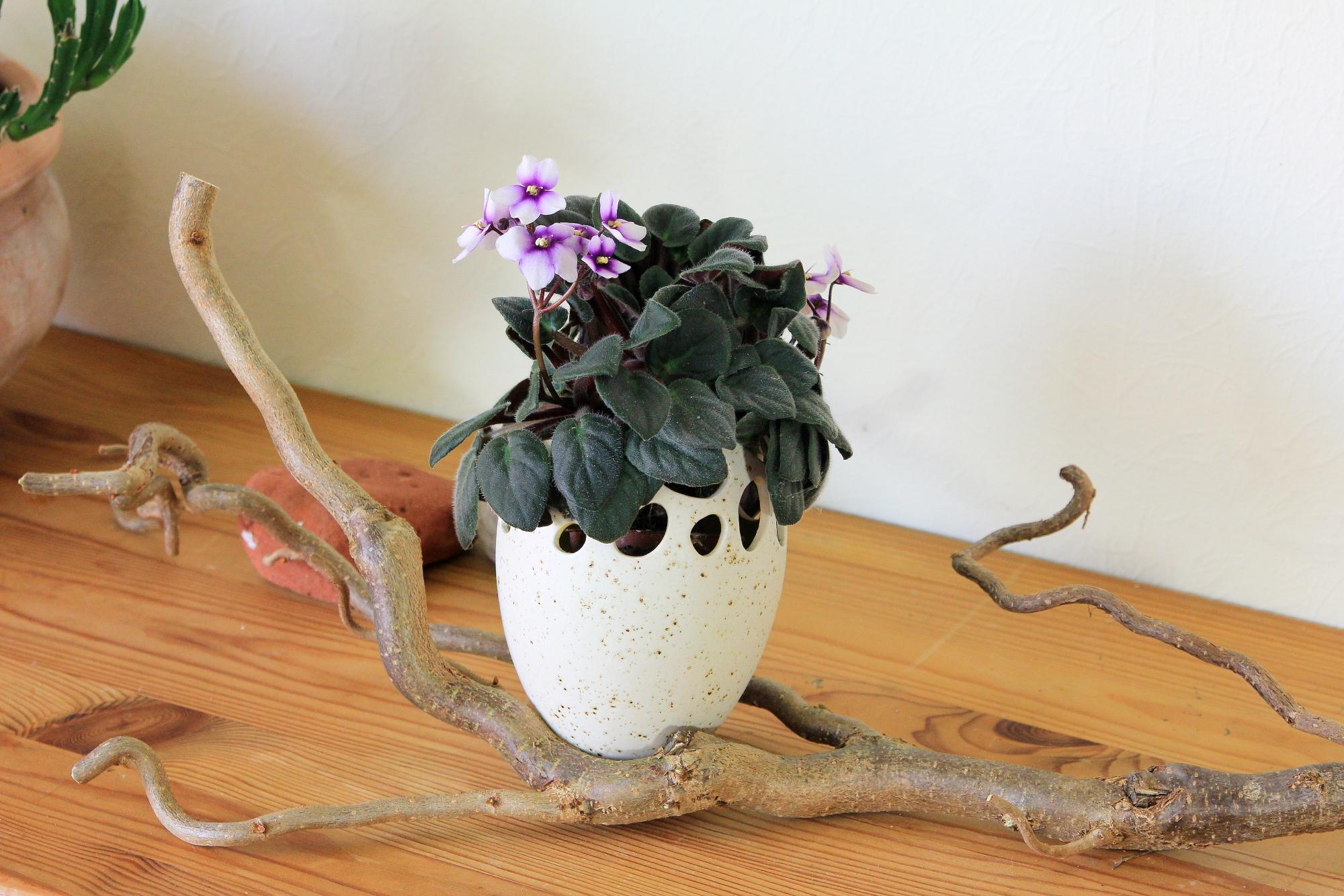 Blumentopf, Übertopf