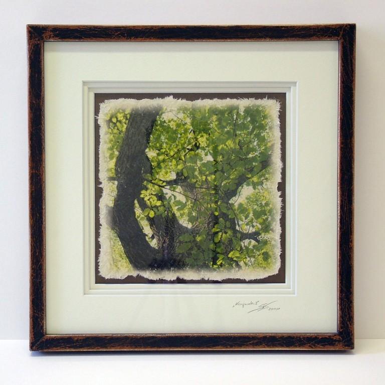 "Artprint ""Kronjuwelen"" (Druck, oberflächenveredelt auf handgeschöpftem Papier, 3-fach Passepartout, Echtholzrahmung)"