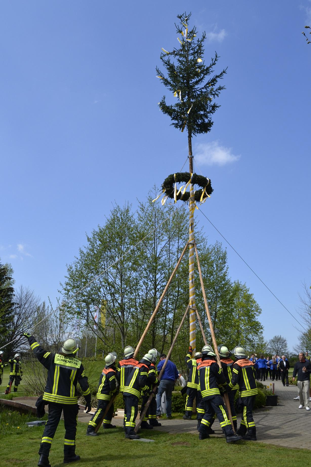 Eine schöne Tradition ist das Maibaum-Stellen im GC Reutlingen-Sonnenbühl. Die elf Männer der Feuerwehr Sonnenbühl in Aktion - © Golfclub Reutlingen-Sonnenbühl e.V.
