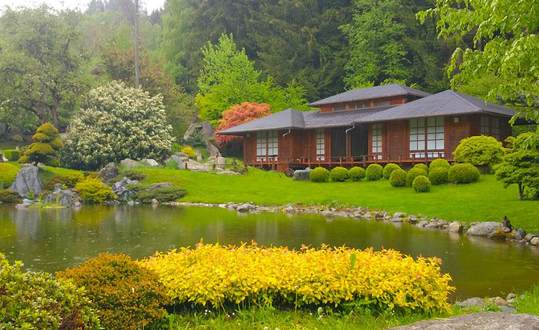 Das Teehaus im Bonsai-Museum - © Peter v. Oppen