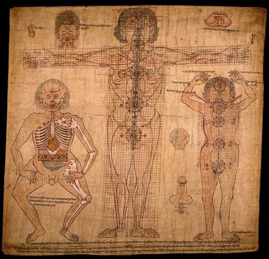sophrologie troyes aube champagne grand-est planche anatomique Tibet massage Ku-Nye thérapies externes conscience spiritualité
