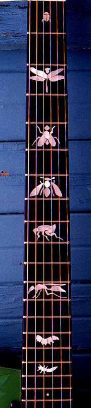 fantastic inlay! Who wants birds, Paul?