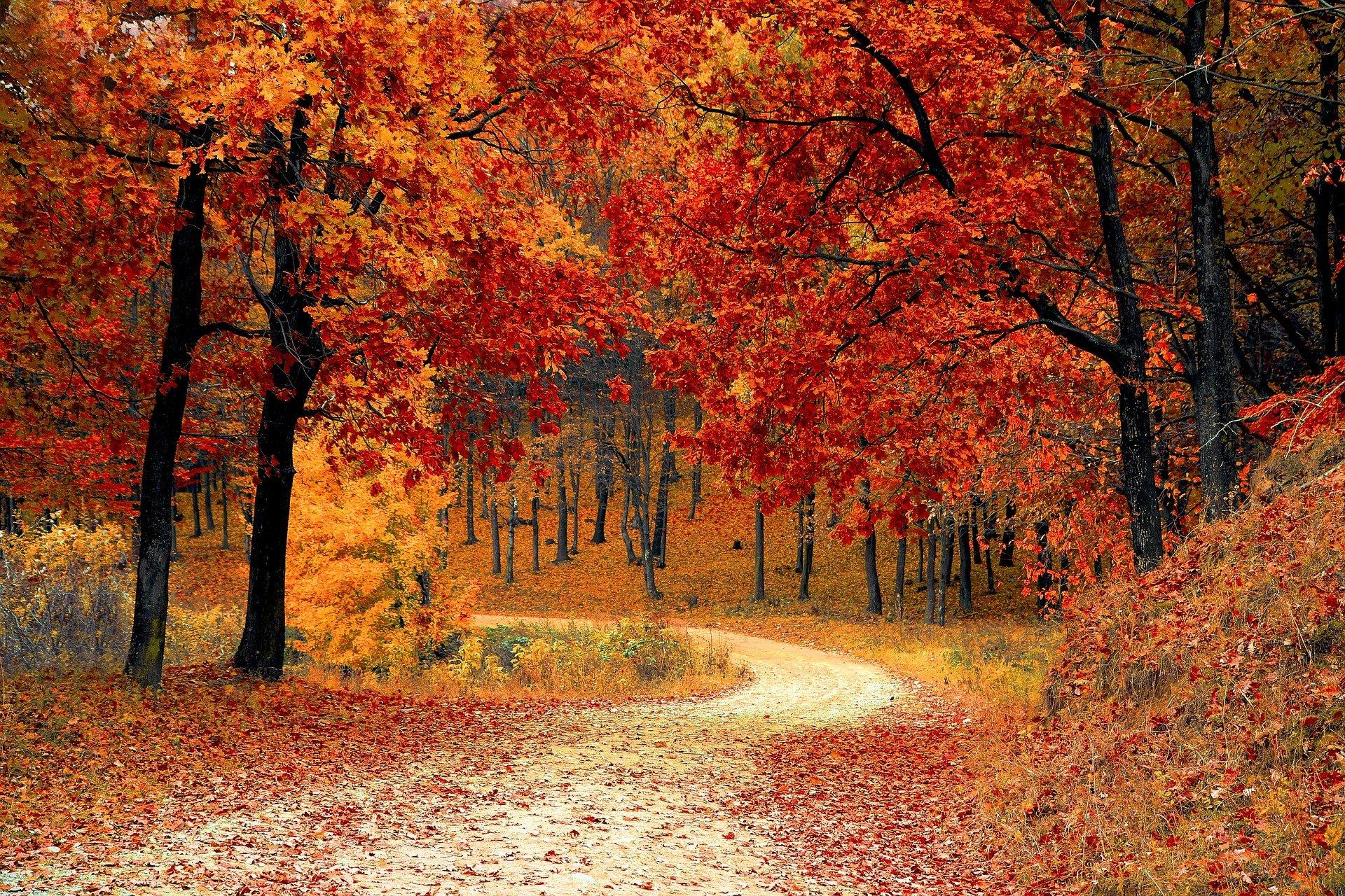 October Ballad - Jüngste Version