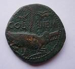 Nîmes sous Auguste