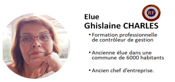 """Capture d'écran site internet """"Bien vivre notre village"""""""