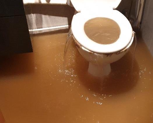 Les toilettes d'Aurélie et Florent au moment des inondations.