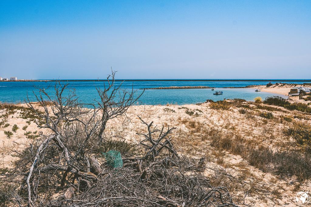 Ilha Deserta, August 2019