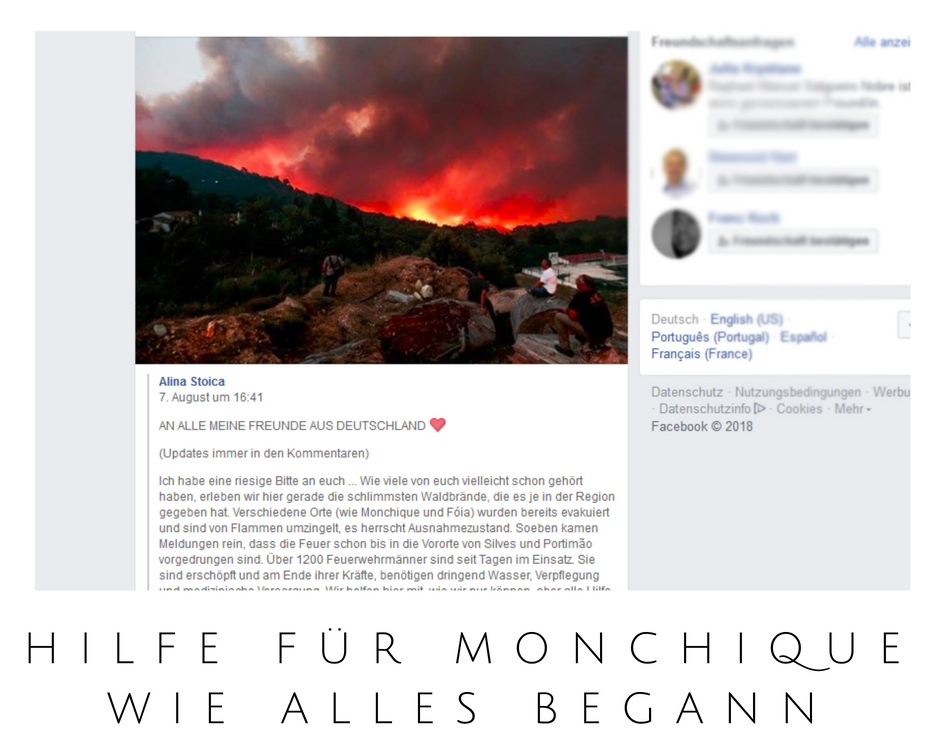 Foto: Screenshot Facebook-Post von Alina Stoica