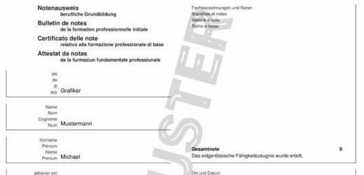 Auch einen Fake-Notenausweis bietet die Website an. Jüngst ist ein Bewerber in der Schweiz mit einem solch gefälschten Diplom aufgeflogen.