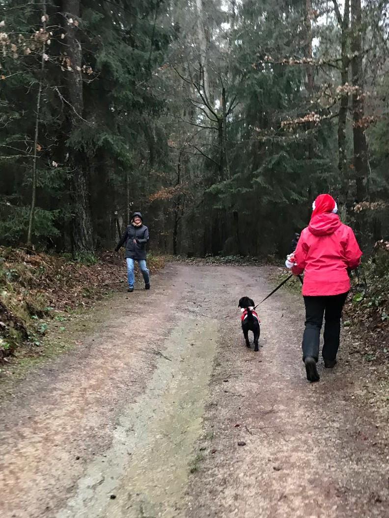 """""""Ein Fräulein hüpft im Walde, ganz nass und singt ;-)"""""""