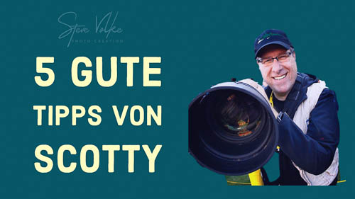 5 gute Tipps von Scotty  - Ab heute bessere Fotos (2)