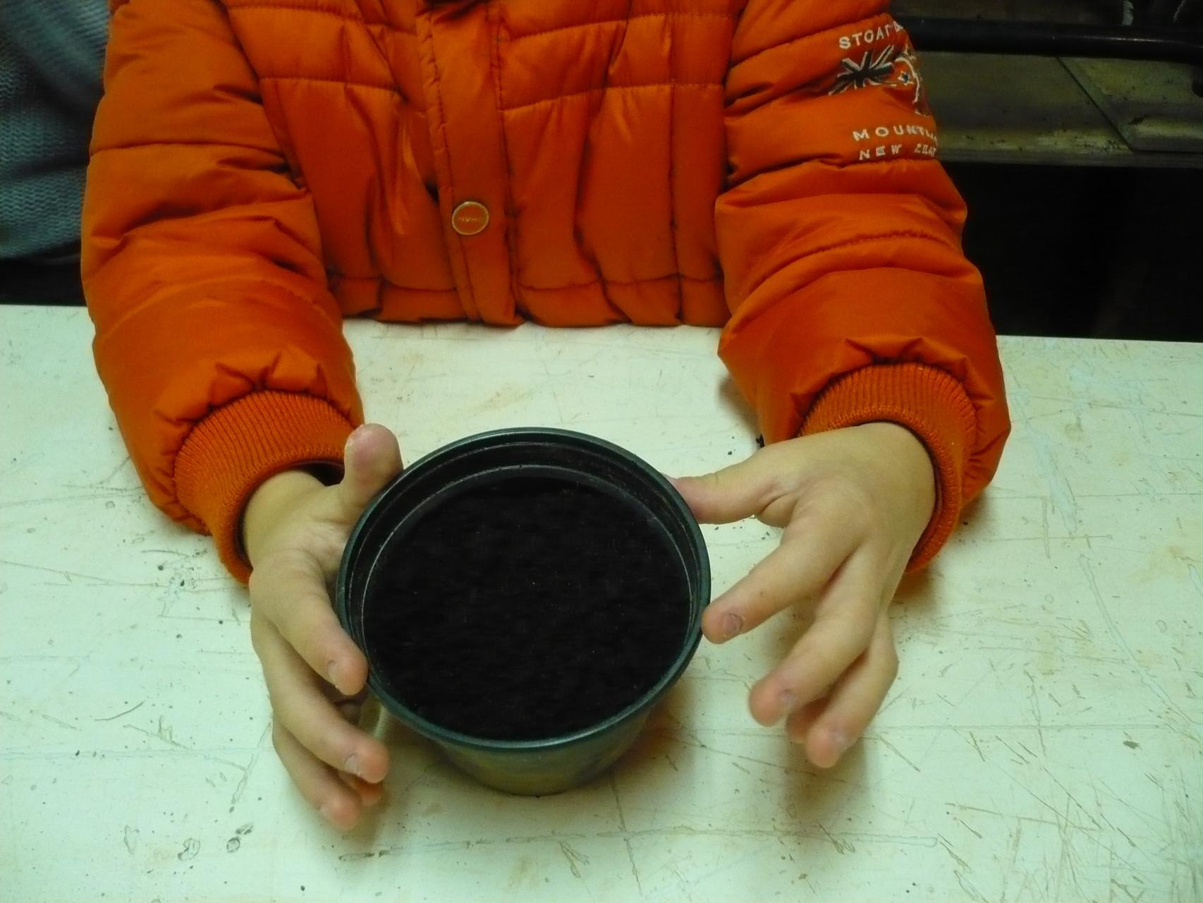 Voici les pots avec la terre © UNAT Centre