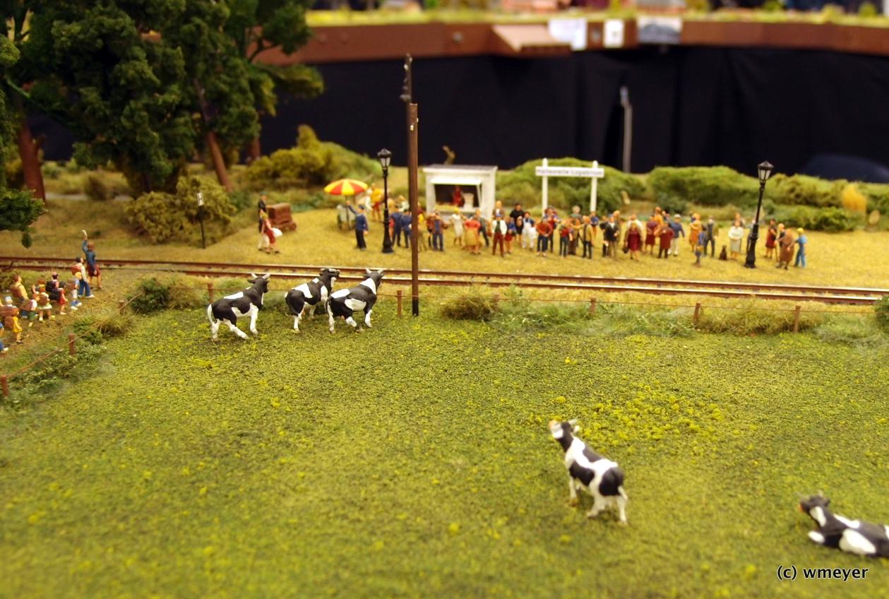 Kleinbahn LAW