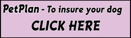 Insure your dog with petplan