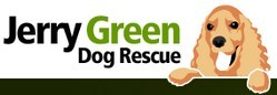 Hull And East Yorkshire Boxer Dog Rescue