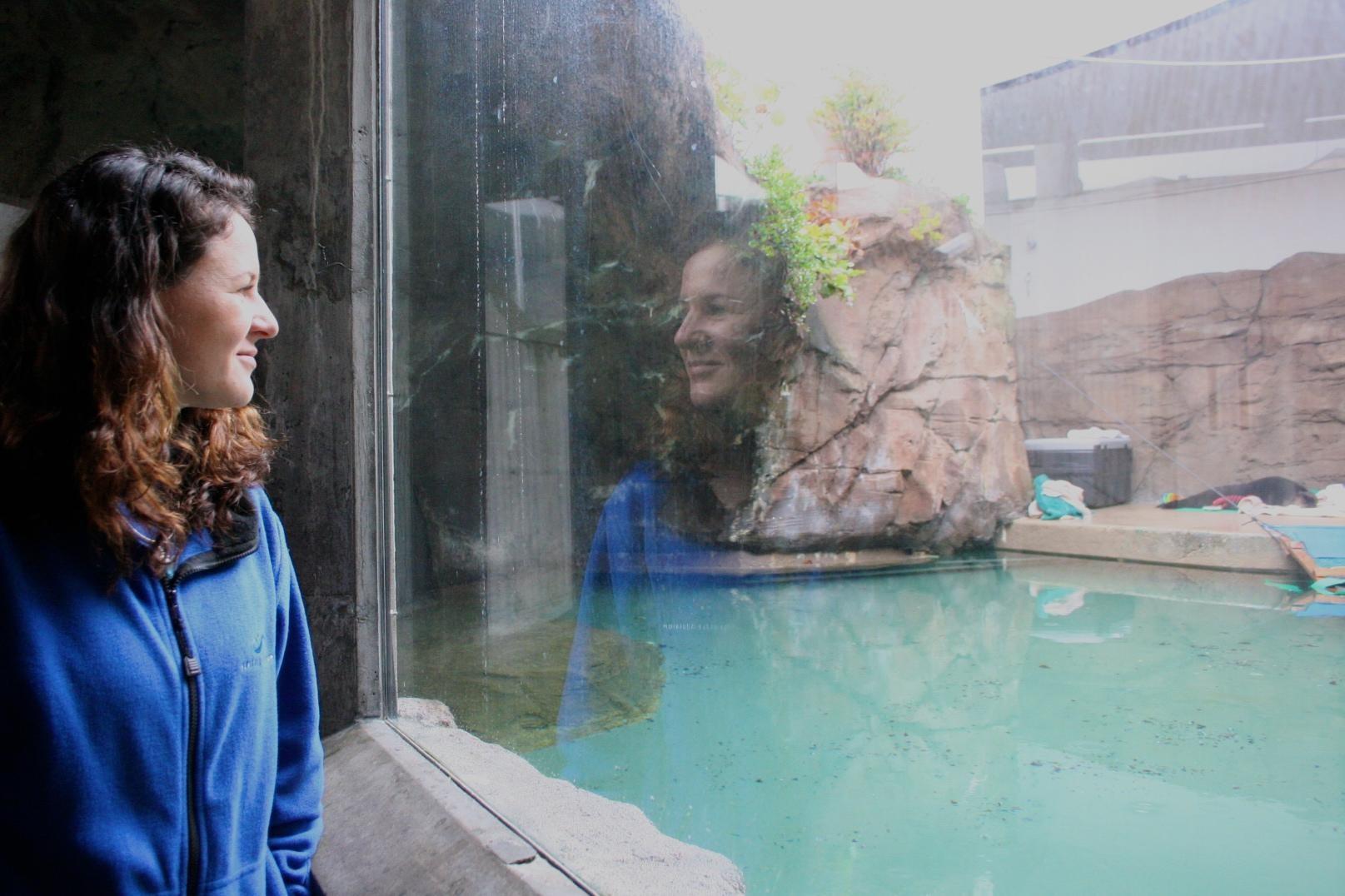 シアトル水族館のラーナー獣医師とミシュカ KUOW Photo/Sara Lerner