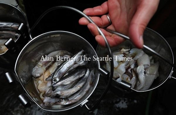 バンクーバー水族館の日々のラッコのエサは、エビ、貝、イカ、シシャモ、ポロック(白身魚)で、全てレストラン級の新鮮なものだ。ラッコは活動的な動物で、毎日体重の4分の1の量を食べなければならない。
