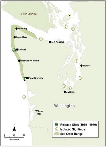 現在のワシントン州のラッコの分布域、1969年及び1970年の再放流場所とワシントン州における目撃場所(Lance et al.2004より)
