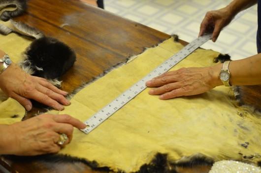 ラッコの毛皮を使った縫製教室で、ラッコの毛皮を採寸し断裁する生徒たち