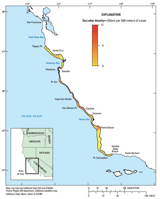 図4:カリフォルニア本土中央沿岸部におけるカリフォルニアラッコの地域ごとの個体密度のバリエーション(沿岸500メートルあたりのラッコの数)。サンニコラス島の空間的に明白な分析が現在おこなわれていないため、サンニコラス島のデータは示されていない。