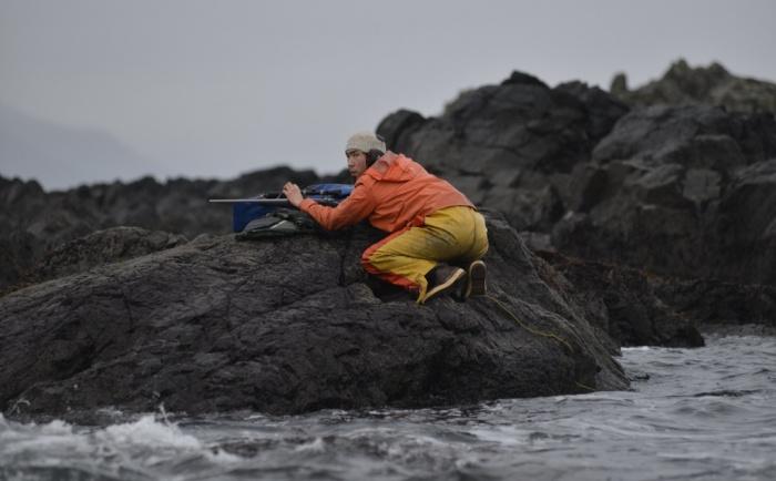 獲物を探すウィリアムス 写真:James Poulson