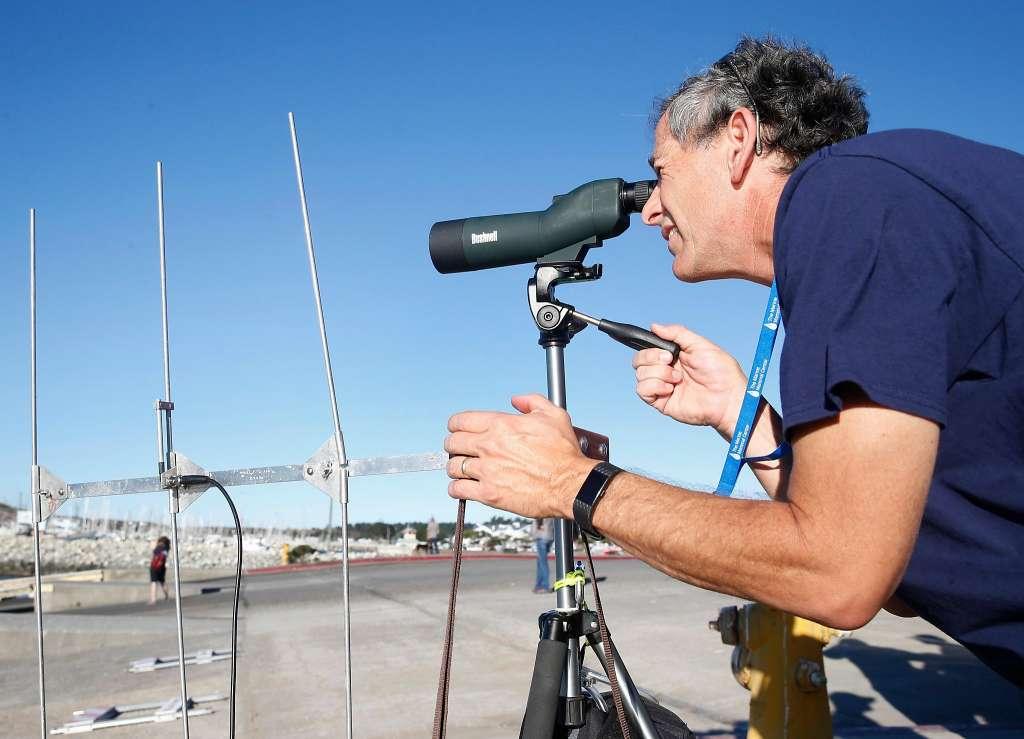 2017年10月24日火曜日、カリフォルニア州ハーフムーン湾ピラーポイントハーバーで海洋哺乳類センターのボランティアやスタッフらにより海へリリースされた後、ジョン・ベルトランがヤンキー・ドゥードルの動きをスポッティングスコープと無線受信装置を使って追跡している。ヤンキー・ドゥードルはドウモイ酸の病気にあり7月に保護され、健康を取り戻した。