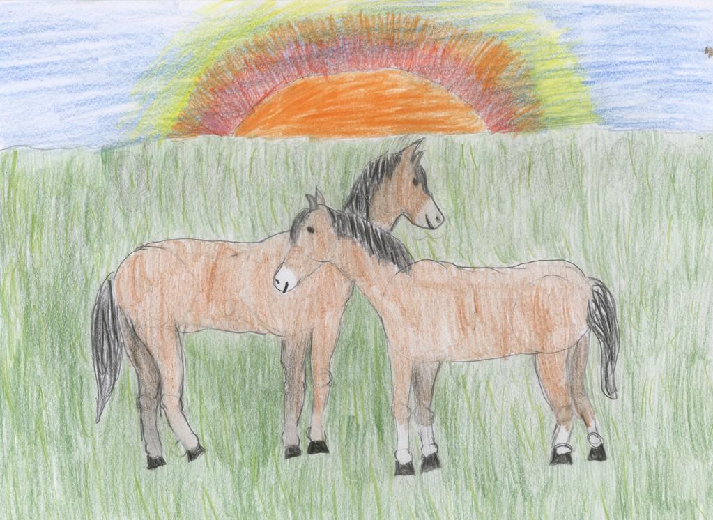 "Rebecca 12 Jahre  ""Pferde"""
