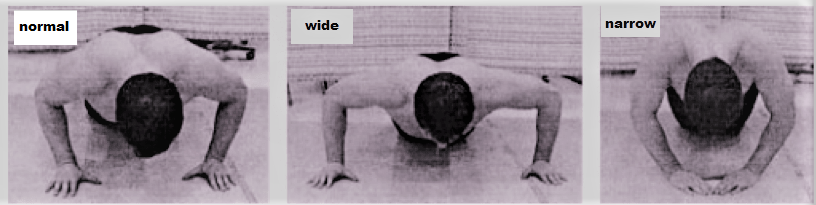normal, wide, and narrow push-ups
