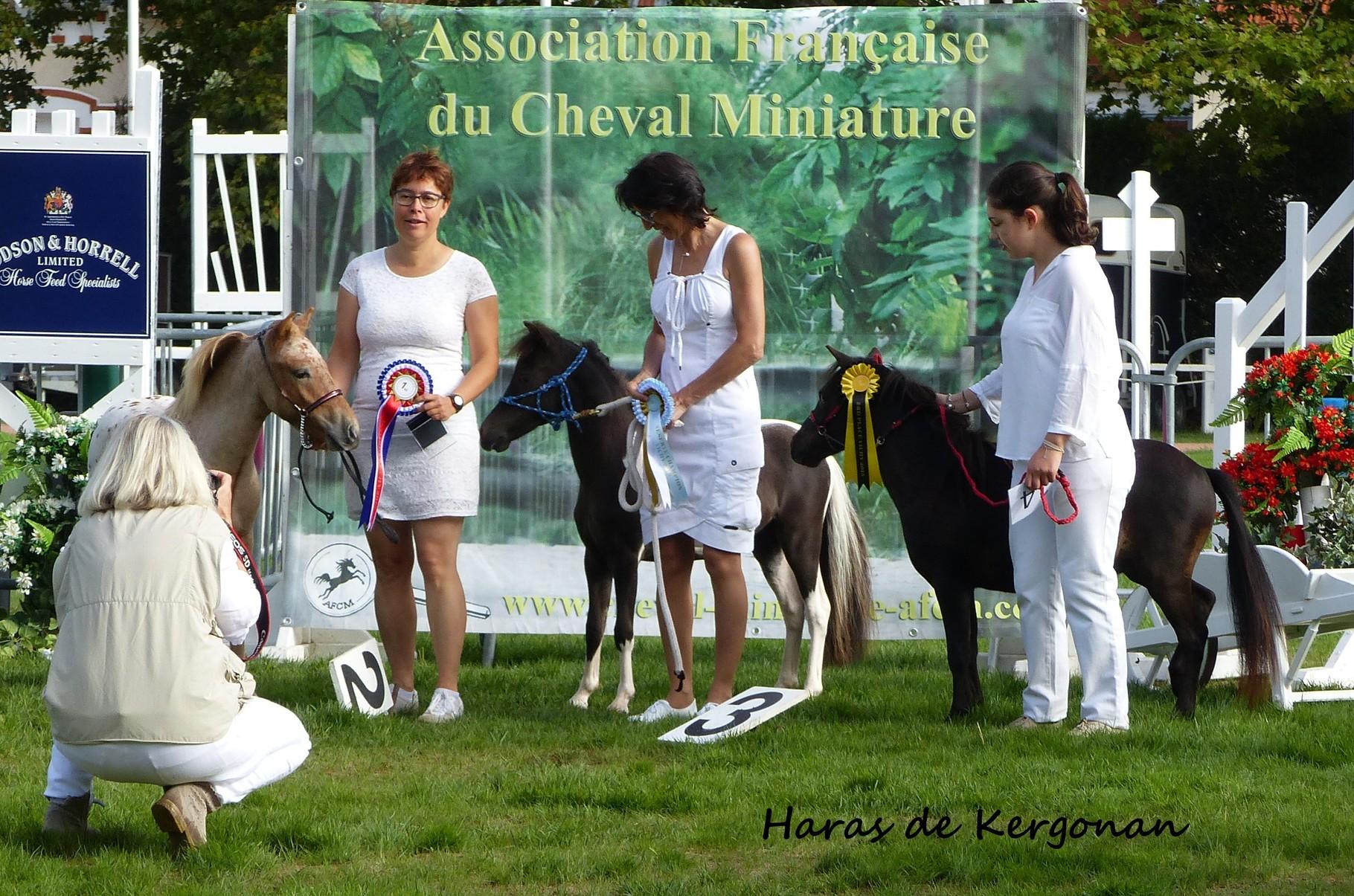 Août 2015 : championnat de France des minis à Vichy