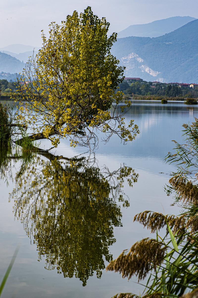FOTO 12 - ENRICO SALERI