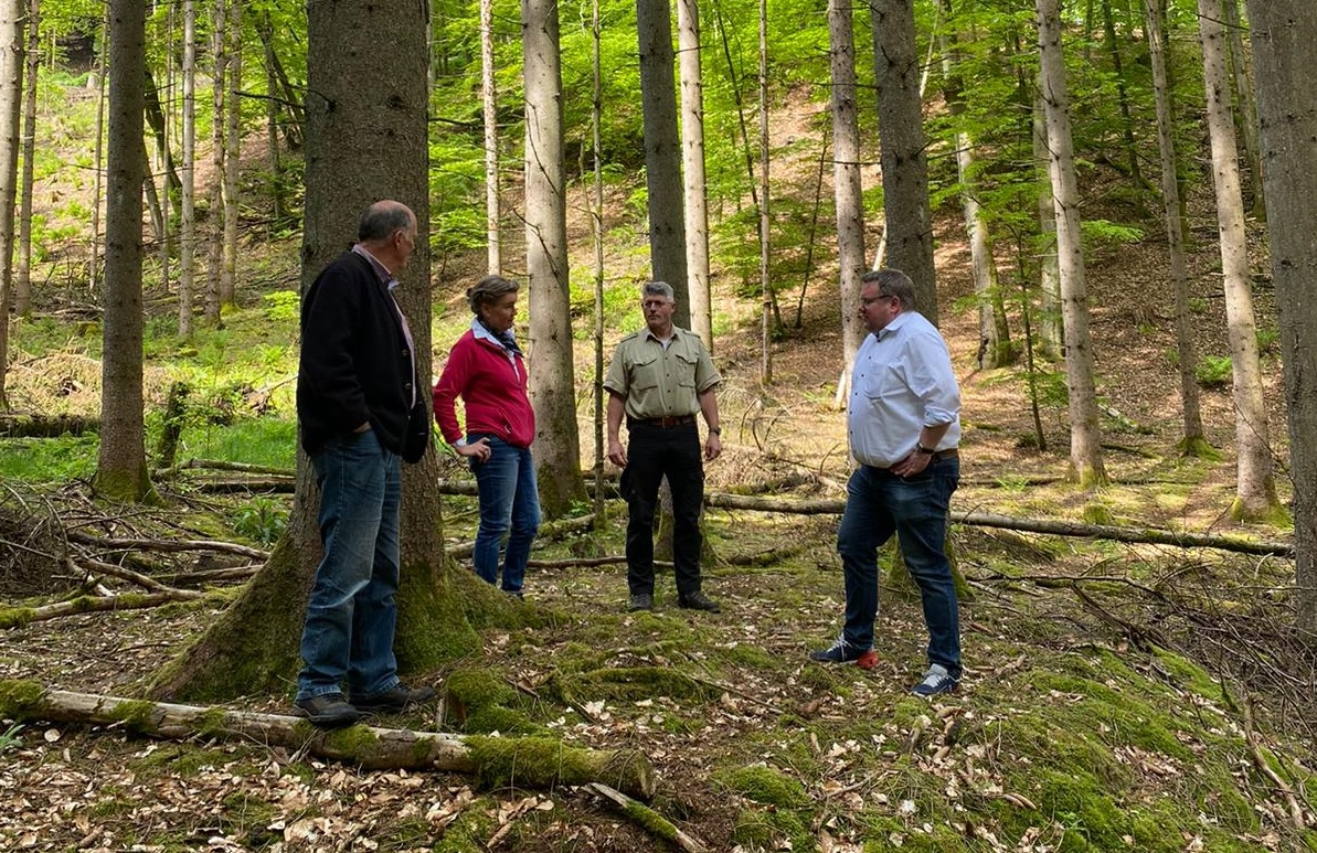 Bundesministerium für Ernährung und Landwirtschaft fördert den kommunalen Wald im Wahlkreis mit 350.000 Euro.