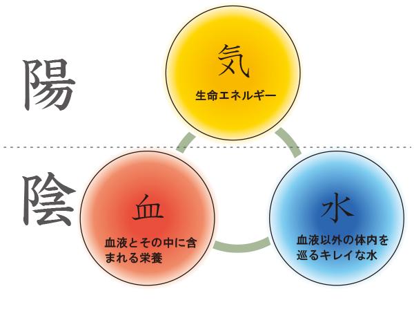 漢方の「気血水」理論