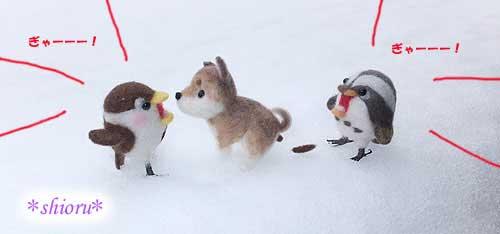 雪の中、うんちんぐポーズする柴犬さんと絶叫するスズメンジャーとツグミさん