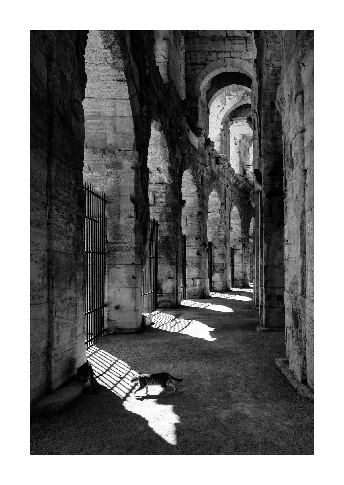 Les arènes - Arles.