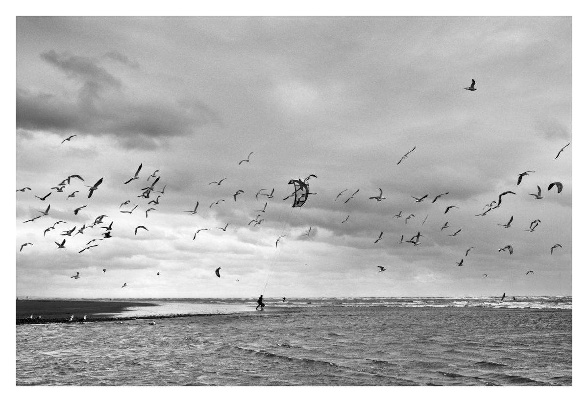 Icare - Cayeux Sur Mer.