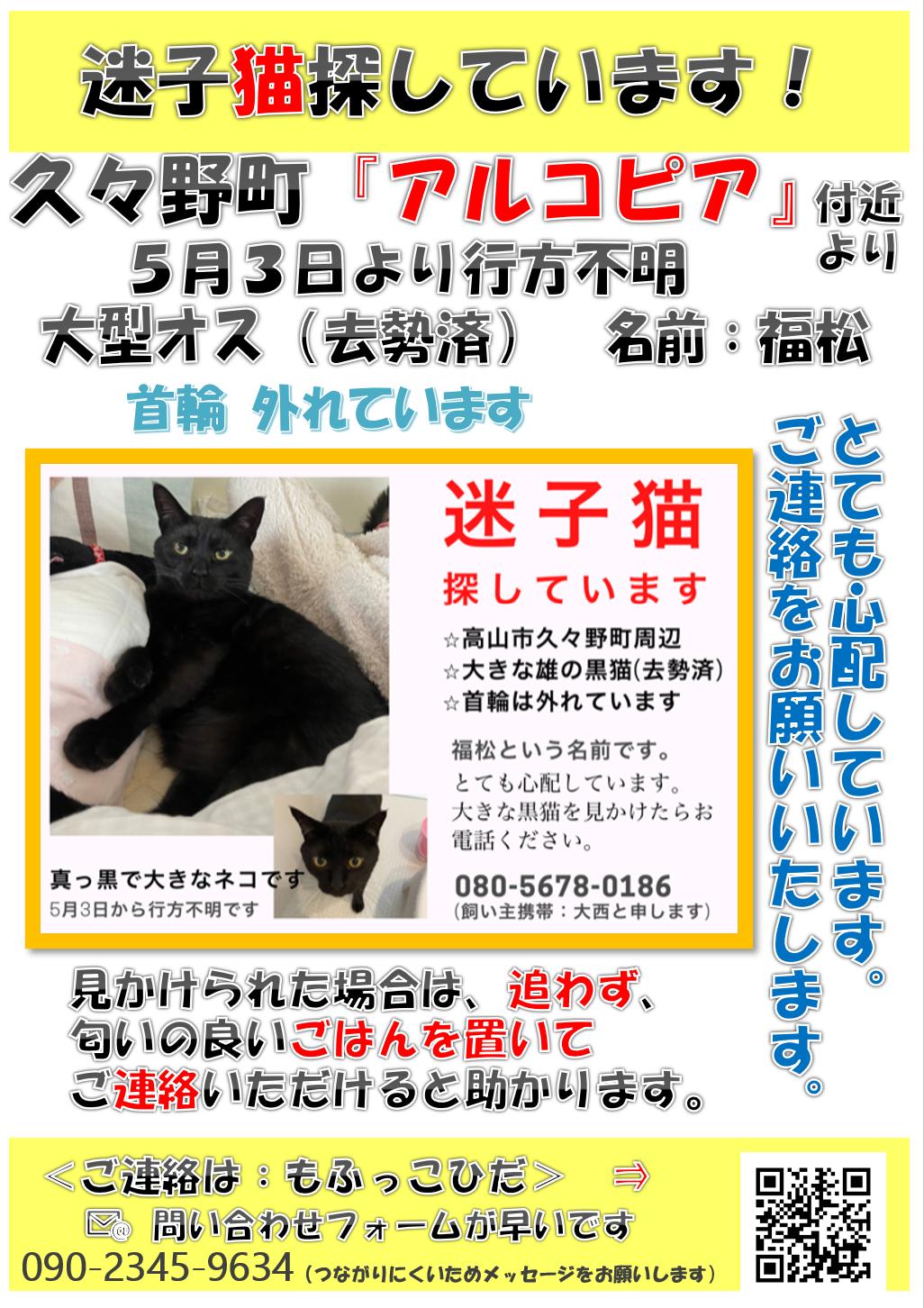 >〇<緊急 久々野町で猫!探しています!!>〇<