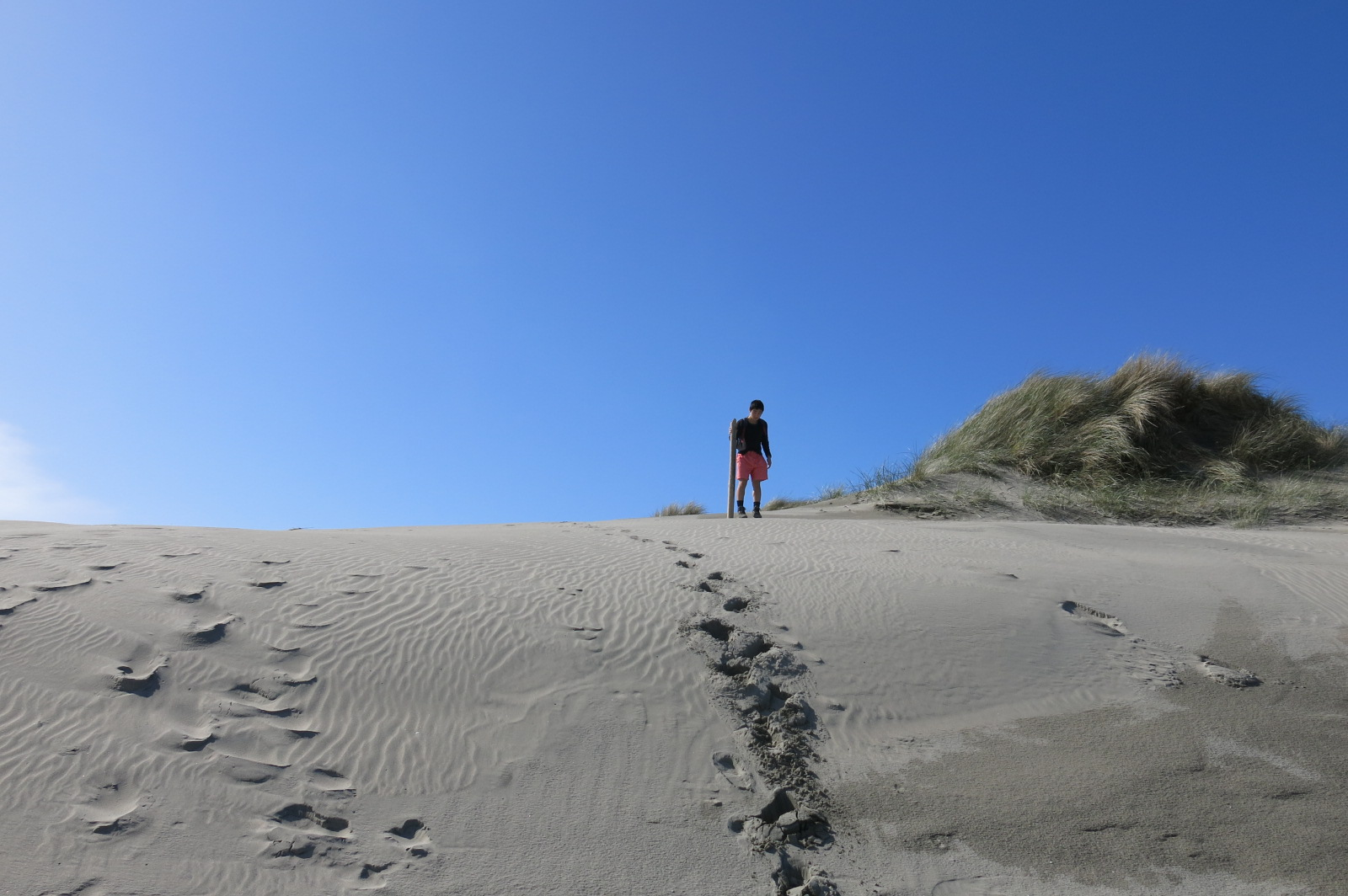 Golden Bay, Sand Dune /フェアウェルスピットにある砂丘
