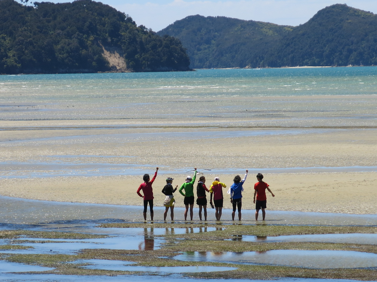 Abel Tasman National Park 未舗装のトレイルとビーチなど