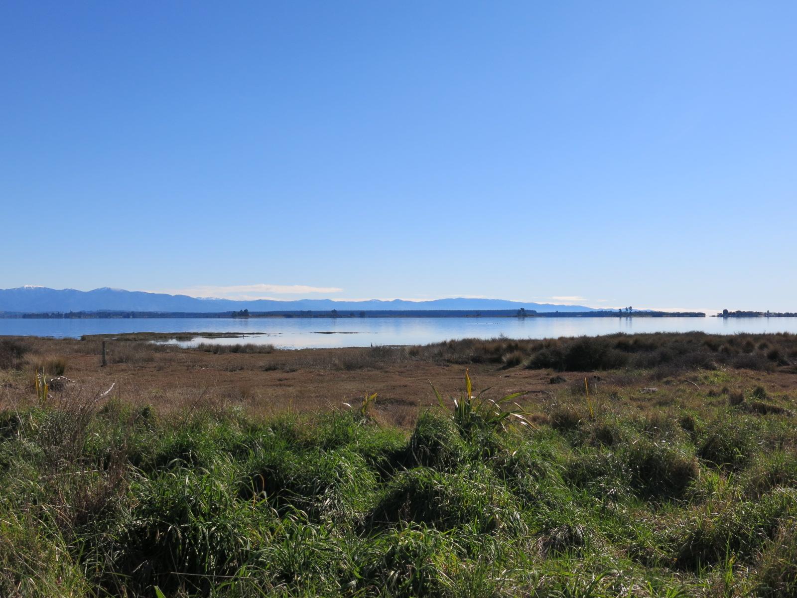 Nelson Bike Trailから海を臨む。ランニングにも