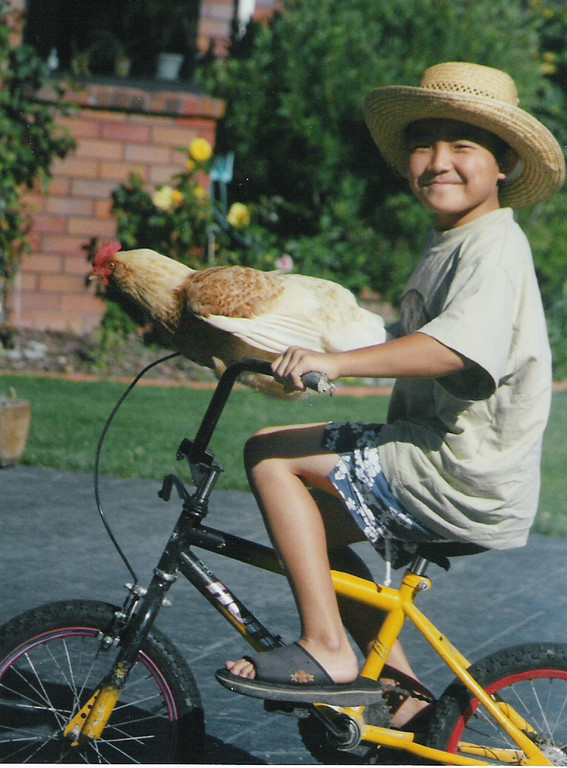 Toma with Pet Chicken